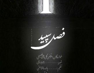 دانلود آهنگ مرتضی گلی و علی فصیحی به نام فصل سپید