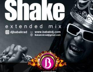 دانلود ریمیکس دیجی بابک به نام Shake