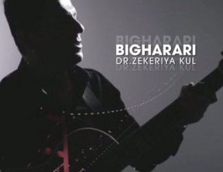 دانلود آهنگ Dr Zekeriya Kul به نام بی قراری