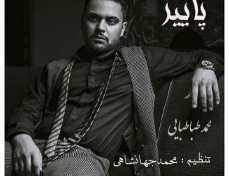 دانلود آهنگ محمد طباطبایی به نام پاییز