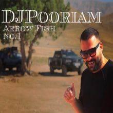 دانلود آهنگ دیجی پوریام به نام Arrow Fish No1