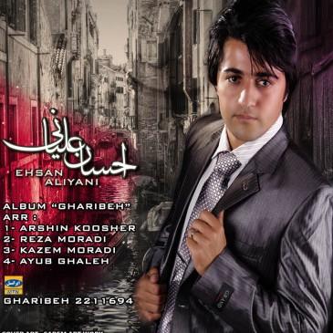 Ehsan Aliyani – Gharibe