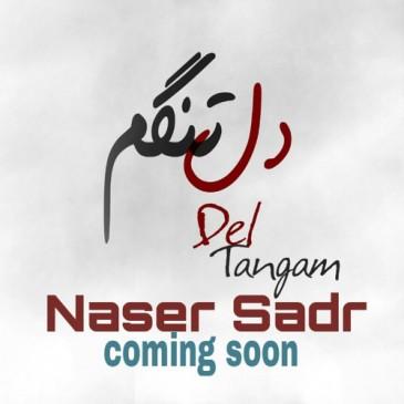 به زودی آهنگ جدید ناصر صدر به نام دلتنگم