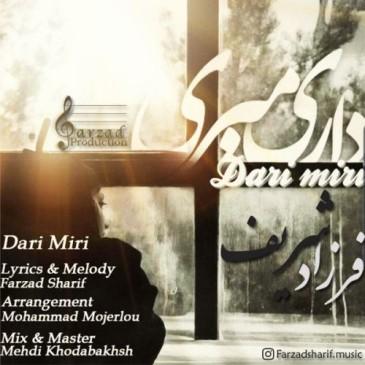 دانلود آهنگ جدید فرزاد شریف به نام داری میری