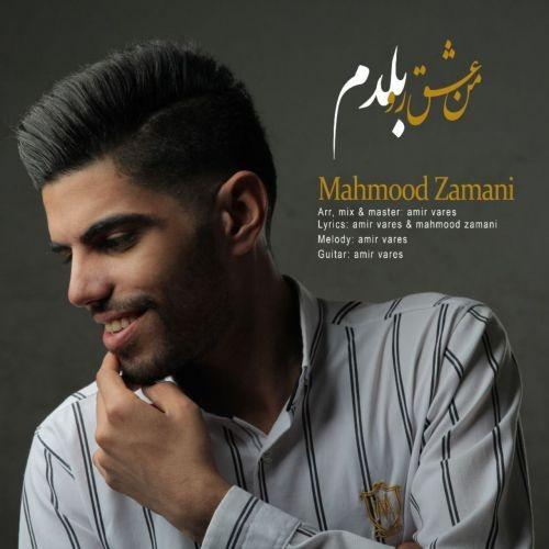 دانلود آهنگ محمود زمانی به نام من عشقو بلدم
