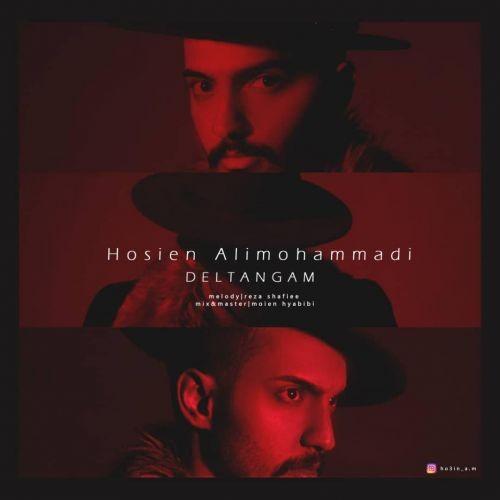 دانلود آهنگ حسین علی محمدی به نام دلتنگم