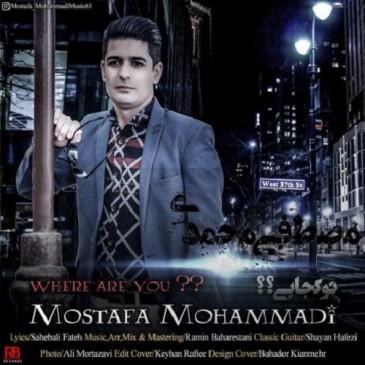 دانلود آهنگ جدید مصطفی محمدی به نام تو کجایی