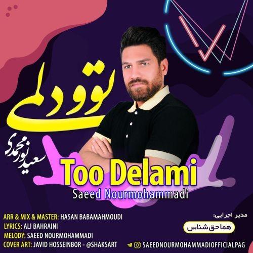 دانلود آهنگ سعید نورمحمدی به نام توو دلمی