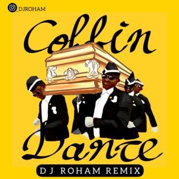 دانلود ریمیکس دی جی رهام به نام Coffin (Dance Remix)