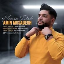 Amin Mosadegh