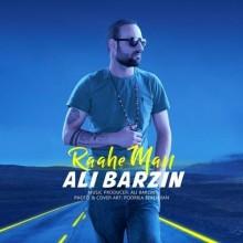 Ali Barzin