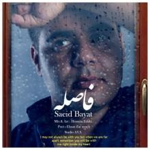Saeid Bayat