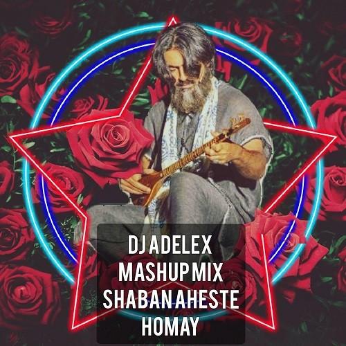 دانلود ریمیکس دیجی ادلکس و Homay Mashup Mix به نام شبان آهسته (۲)