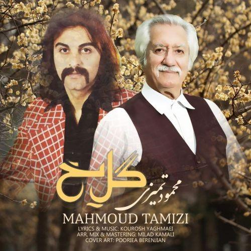 دانلود آهنگ محمود تمیزی به نام گل یخ