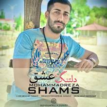 دانلود آهنگ محمد رضا شمس به نام دلتنگ عشق