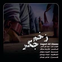 دانلود آهنگ سید علی شمس به نام زخم جگر