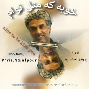 دانلود ویدیو پرویز نجف پور به نام خوبه که مثل توام