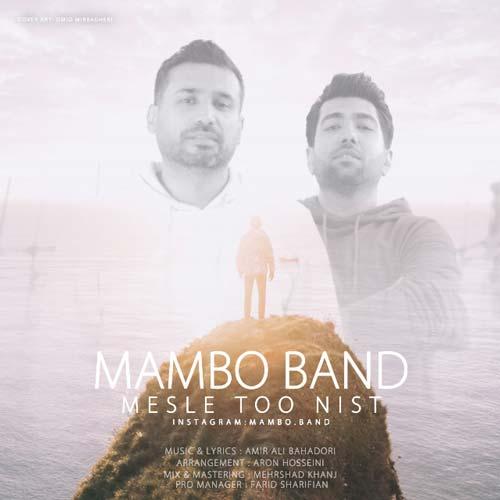 دانلود آهنگ گروه مامبو باند بنام مثل تو نیست