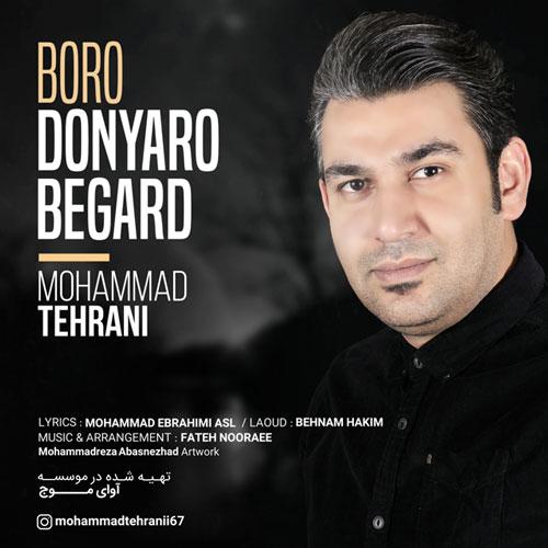 دانلود آهنگ محمد تهرانی بنام برو دنیا رو بگرد