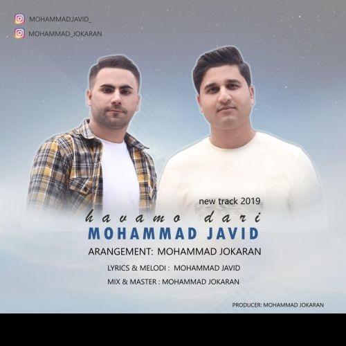 Mohammad Javid&nbspHavamo dari