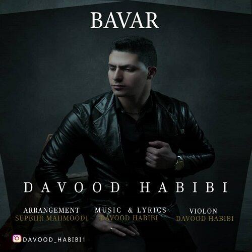 داوود حبیبی - باور