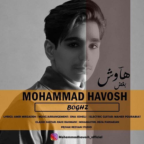محمد هاوش - بغض