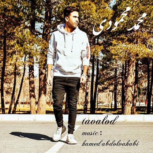 محمد محمودی - تولد