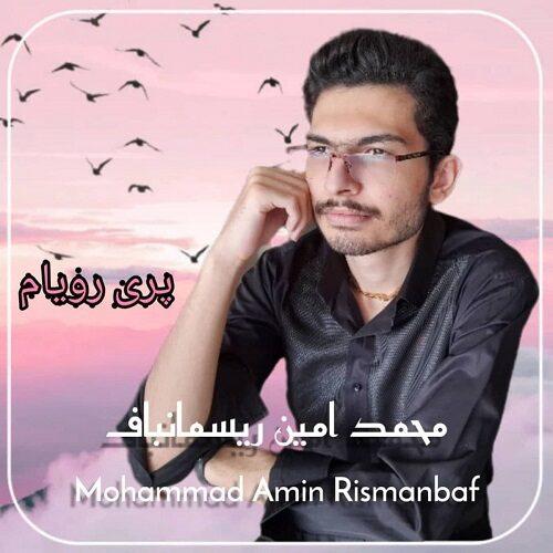 محمد امین ریسمانباف - پری رویام
