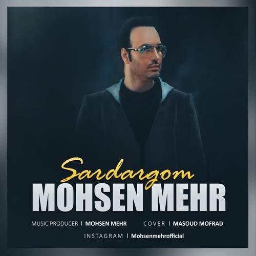 محسن مهر - سردرگم