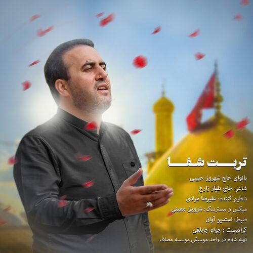 شهروز حبیبی - تربت شفا