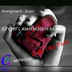 AmirHossein-Rahim-Ghalbe-Tike-Pareh
